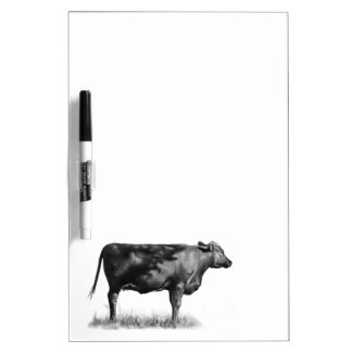 Beef Cow/Heifer in Pencil: Realism: Drawing Dry-Erase Boards