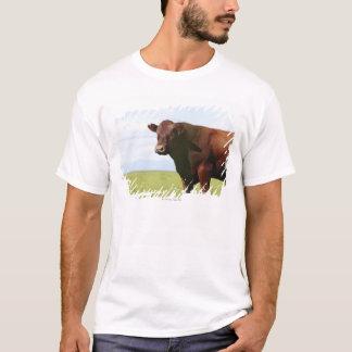 Beef cow in field T-Shirt