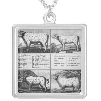 Beef, Veal, Pork, and Mutton Cuts, 1802 Silver Plated Necklace