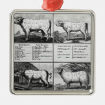 Beef, Veal, Pork, and Mutton Cuts, 1802 Square Metal Christmas Ornament