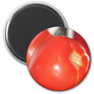 Beefy Tomaters magnet