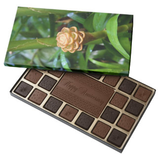 Beehive Ginger Box of Chocolate