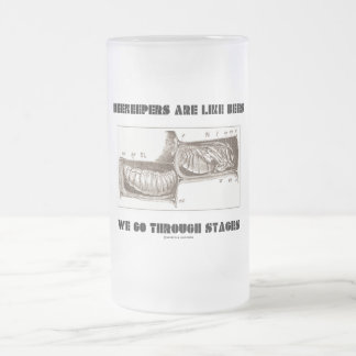 Beekeepers Are Like Bees We Go Through Stages 16 Oz Frosted Glass Beer Mug