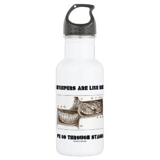 Beekeepers Are Like Bees We Go Through Stages 18oz Water Bottle