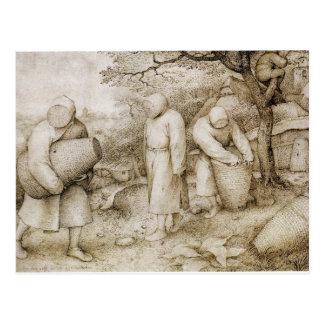 Beekeepers by Pieter Bruegel the Elder Postcard