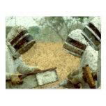 Beekeepers Postcard