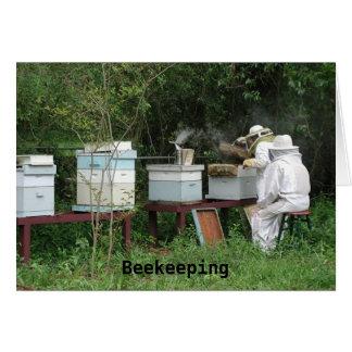 Beekeeping class cards