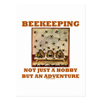 Beekeeping Not Just A Hobby But An Adventure Postcard