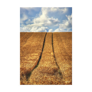 Been and Gone - tracks in a wheat field Canvas Print