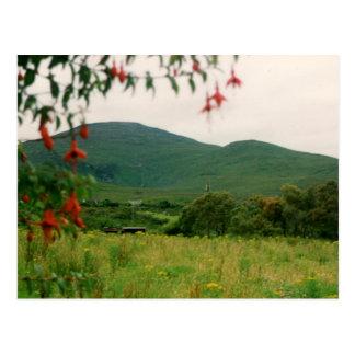 Beenoskee Mountain, Castlegregory, Ireland Postcard