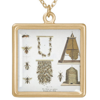Bees and bee-keeping, from 'The Young Landsman', p Gold Plated Necklace