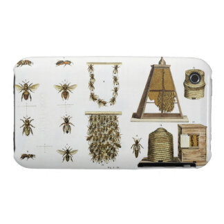 Bees and bee-keeping, from 'The Young Landsman', p iPhone 3 Cover
