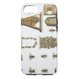 Bees and bee-keeping, from 'The Young Landsman', p iPhone 8/7 Case