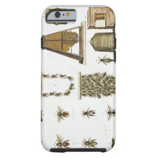 Bees and bee-keeping, from 'The Young Landsman', p Tough iPhone 6 Case