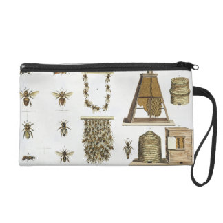 Bees and bee-keeping, from 'The Young Landsman', p Wristlet Purse