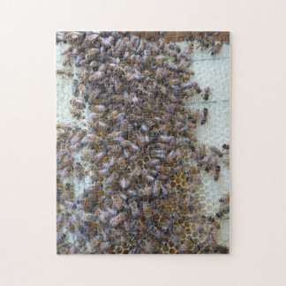 Bees, Bees!  Where's Queen Bee? Jigsaw Puzzle
