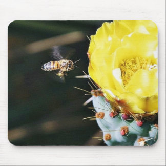 Bees Cactus Flowers Mousepad