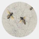 Bees Classic Round Sticker