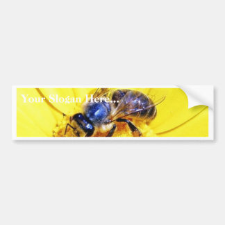 Bees Flowers Insects Car Bumper Sticker