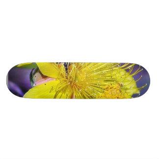 Bees Flowers Skateboard Deck