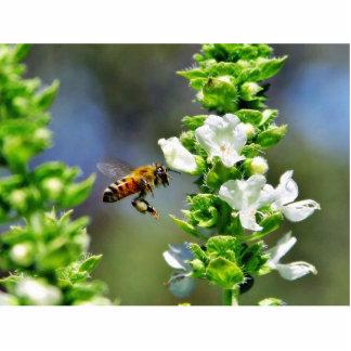 Bees Fying Flight Wings Photo Sculptures