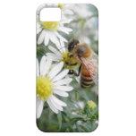 Bees Honey Bee Wildflowers Flowers Daisies Photo iPhone 5 Case