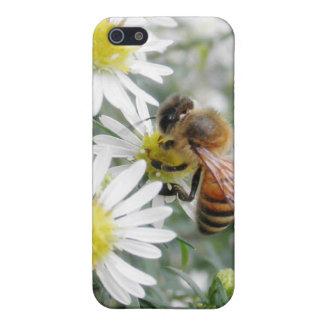 Bees Honey Bee Wildflowers Flowers Daisies Photo iPhone SE/5/5s Case