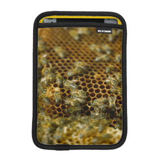 Bees In Hive, Western Cape, South Africa iPad Mini Sleeve