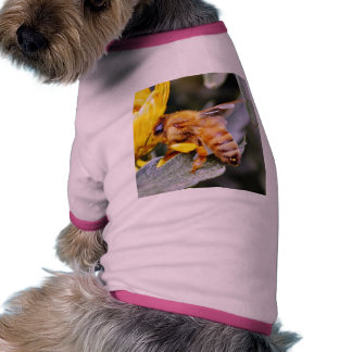 Bees Insects 3 Pet Tshirt