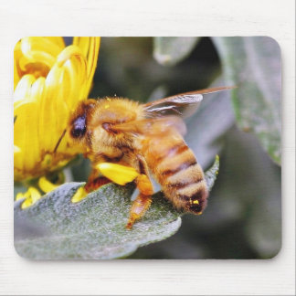 Bees Insects 3 Mouse Pad