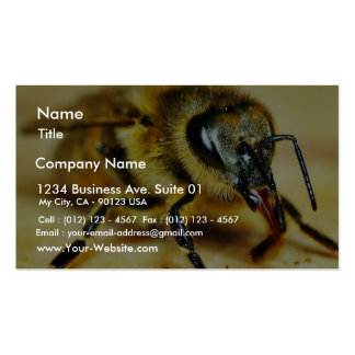 Bees Insects Business Cards
