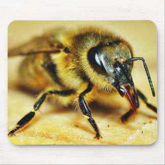 Bees Insects Mouse Pads