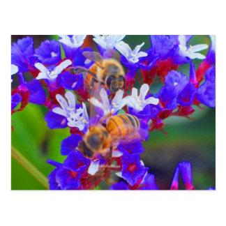 Bees, Love & Bliss Postcard