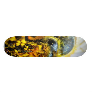Bees Macro Pollen Insects Skateboard