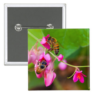 Bees On Coral Vine Flowers Pinback Buttons