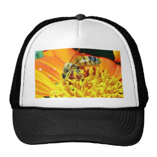 Bees On Flowers Collecting Pollen Hat