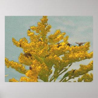 Bees on Goldenrod I Poster