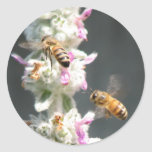 Bees on Lambs Ear Round Sticker