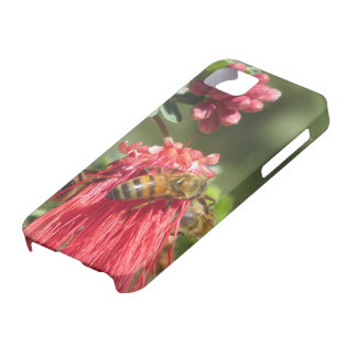 Bees on Pink Flower iPhone 5 Case
