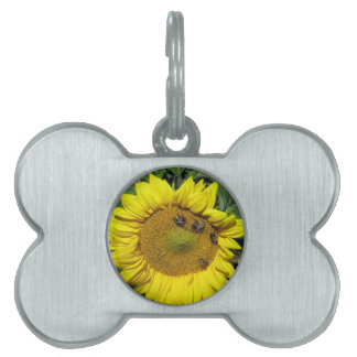 Bees on Sunflower Pet ID Tags