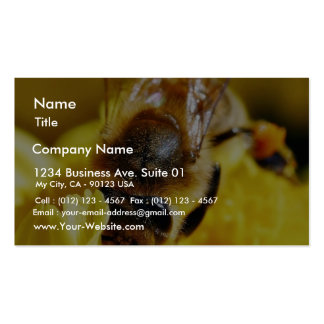 Bees Pollen Insects Wings Macro Bugs Business Card