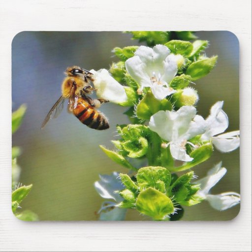 Bees Pollenating Basil Mouse Pads