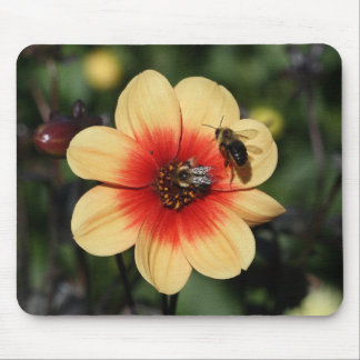 Bees Pollinating Dahlia Mouse Pad