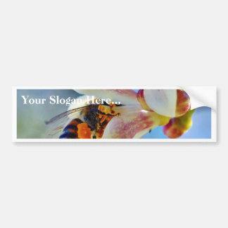 Bees Really Like Pollinating My Myer Lemon Tree Car Bumper Sticker