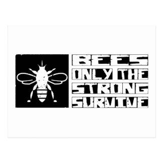 Bees Survive Postcard