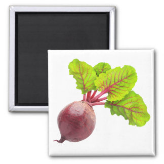 Beet 2 Inch Square Magnet