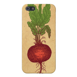 Beet Cover For iPhone SE/5/5s
