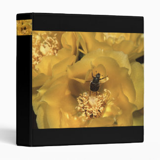 beetle 3 ring binder