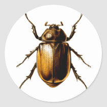 Beetle Classic Round Sticker