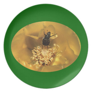 Beetle Dance Party Plate